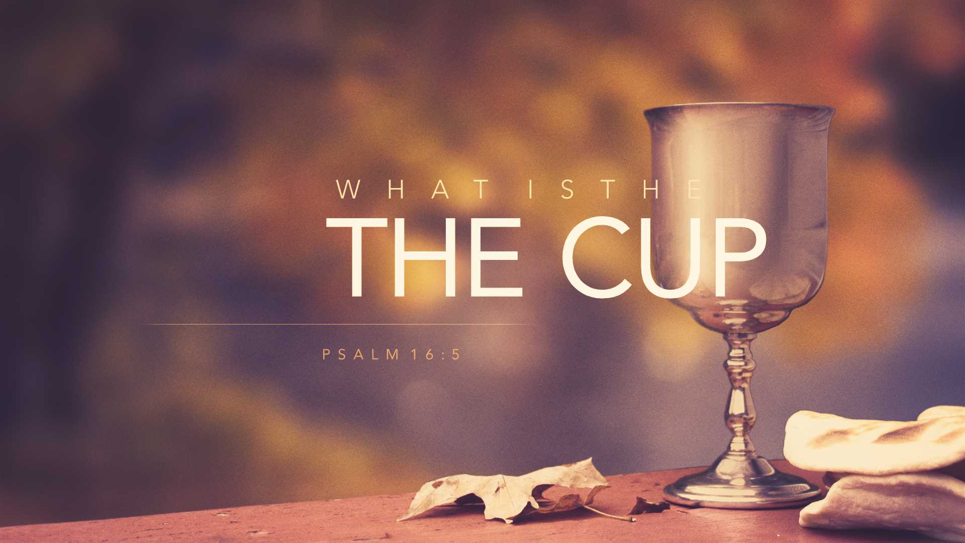 What is the Meaning of the Cup?